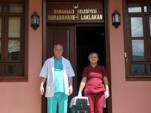 Osmanlı'nın 'leylek hastanesi' şifa dağıtıyor