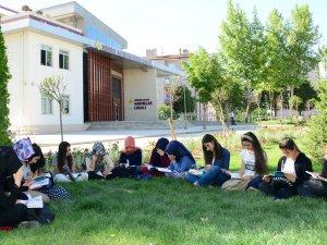 Türkiye'ye örnek yaz okulu