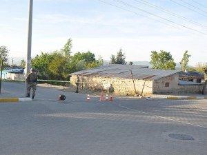 Muş'ta sokağa çıkma yasağı kaldırıldı
