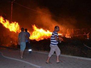 Şiddetli rüzgarda atılan havai fişekler yangına neden oldu