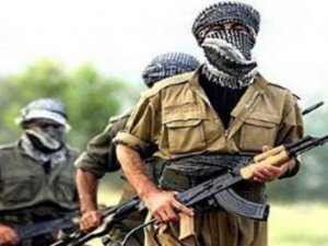 Lice'de 6 terörist yakalandı