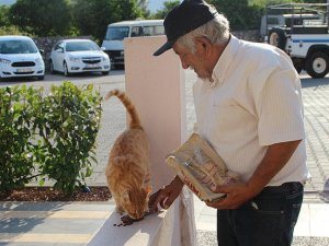 Sokak kedilerinin mamasını 'hurdadan' çıkarıyor
