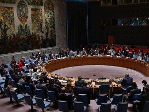 BM Güvenlik Konseyi geçici üye seçimi tamamlandı