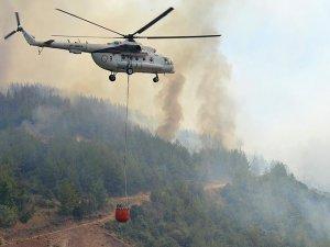 Orman yangınlarında 'terör izi' yok