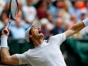 Wimbledon'da Murray ve Berdych yarı finalde