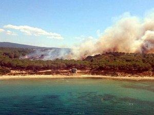 Gelibolu Yarımadası'ndaki orman yangını kontrol altına alındı