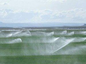 Su kaynakları tek elden yönetilecek