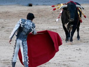 İspanya'da boğa matadoru öldürdü!
