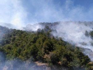 Kızılcahamam'da yangın