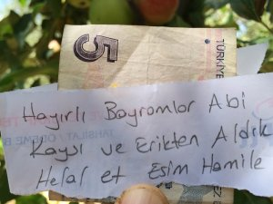 İzinsiz meyve aldığı bahçenin sahibine not bıraktı