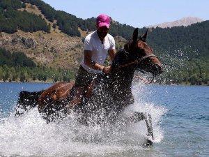 Atlar milli takım için yarışacak