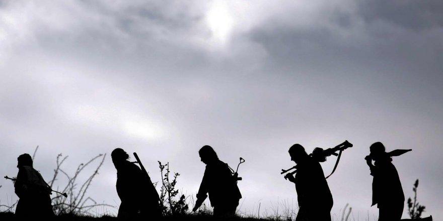 Siirt'te 7 terörist yakalandı