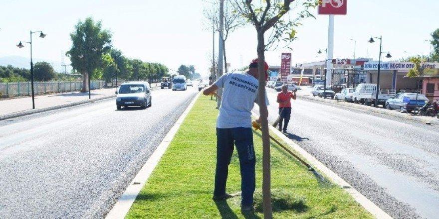 Germencik Belediyesi, Atatürk Caddesi ve Ortaklar'da refüj temizliği yaptı