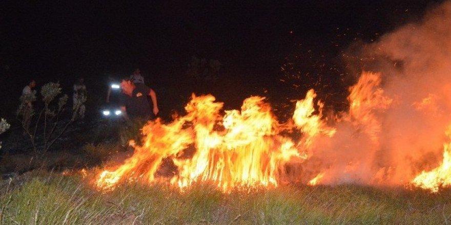 Sinop'ta ot yangını güçlükle söndürüldü