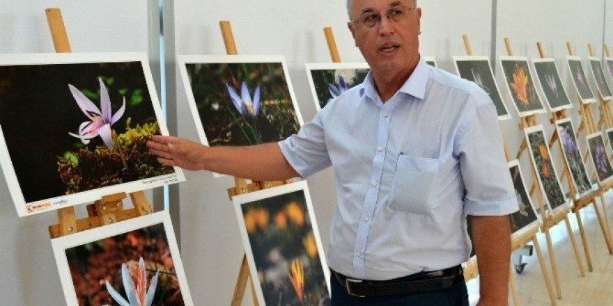 """""""Antalya'nın Çiğdemleri"""" Konyaaltı'nda açtı"""