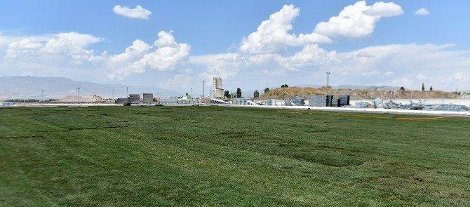 Türkiye'nin en büyük modern güreş arenası Erzurum'da yapılıyor