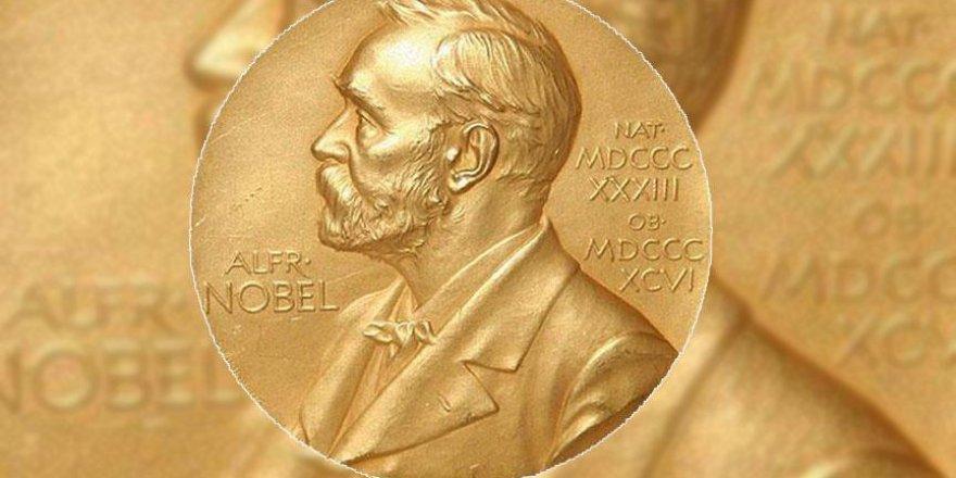 Nobel ödüllü İngiliz yazarın romanı Türkçeye çevrildi