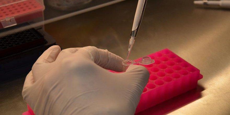Nadir kanser türüne yakalanma nedeni bulundu