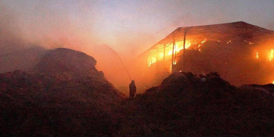 Ankara'daki çiftlik yangınında büyük hasar
