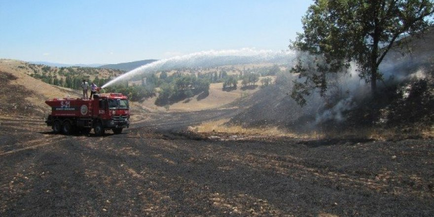 Hisarcık'ta arazi yangını