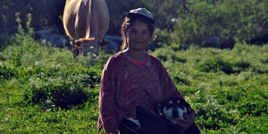 Tatilini çobanlık yaparak geçiriyor