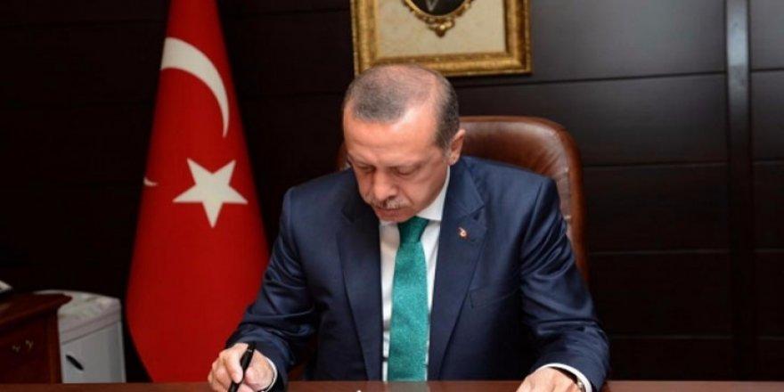 Erdoğan, YÖK üyeliğine o ismi seçti!