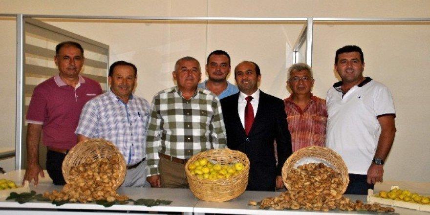 Aydın Ticaret Borsası sezonun ilk incirini 125 TL'ye aldı