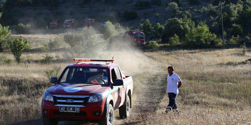 Derbent'teki orman yangını kontrol altına alındı