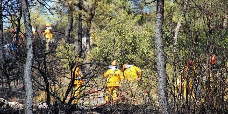 Bodrum'da çıkan orman yangını kısa sürede söndürüldü