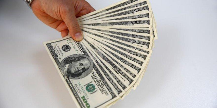 Dolar/TL 2,95'in altına geriledi