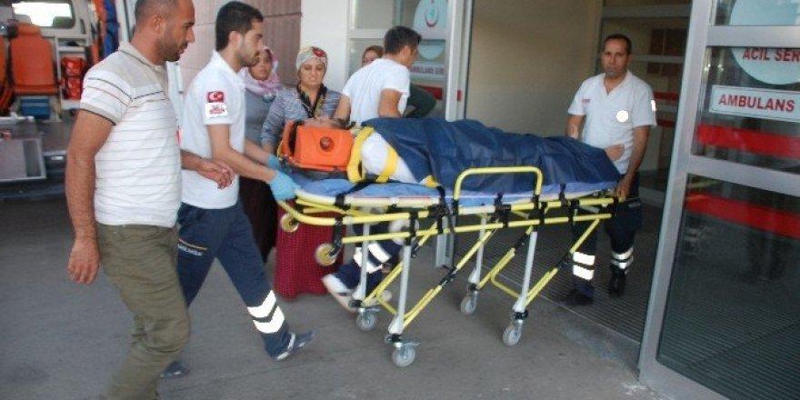 İncir ağacından düşen şahıs yaralandı