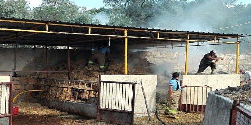 Burhaniye'de samanlıkta yangın