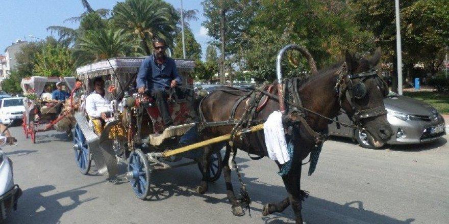 Mudanya'da fayton sefası