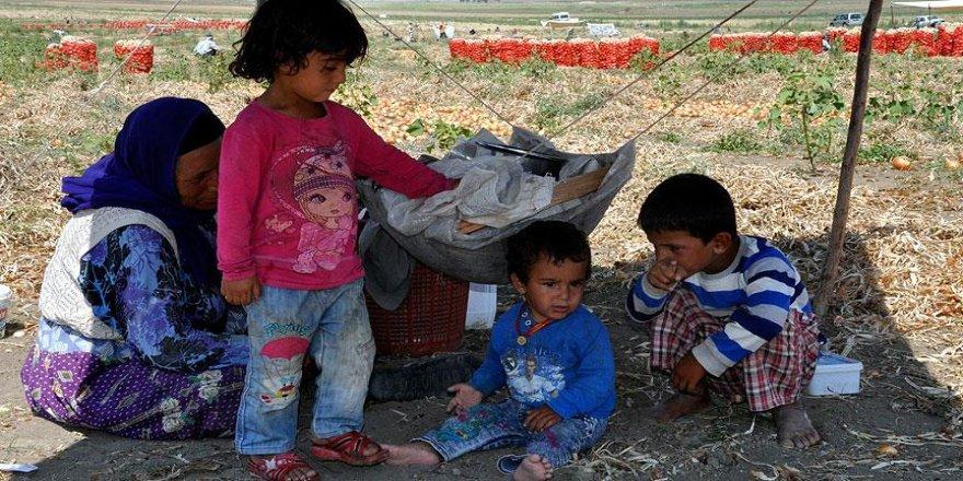 'Ekmek parası' için göçebe hayatı yaşıyorlar
