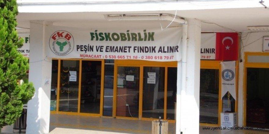 FİSKOBİRLİK Akçakoca'da fındık alımına başladı
