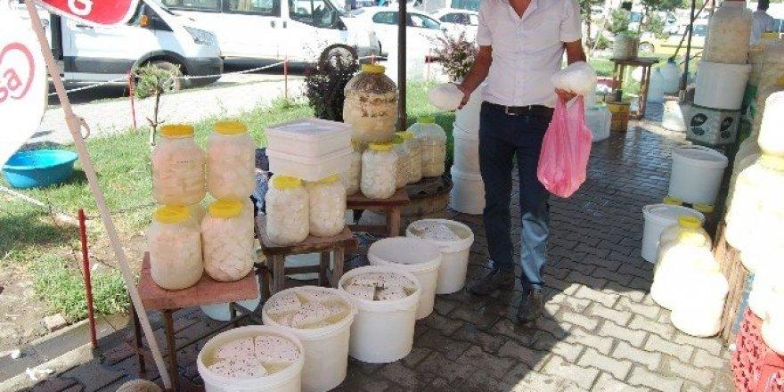 Güroymak'ta kışlık peynir satışları başladı