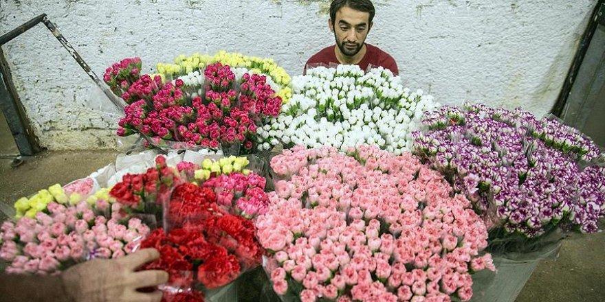 Türkiye'nin çiçekleri dünyayı süslüyor