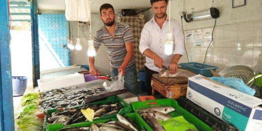 Hisarcık'ta balıklar tezgahtaki yerini aldı