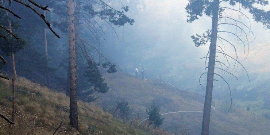 Yozgat'ta orman yangını