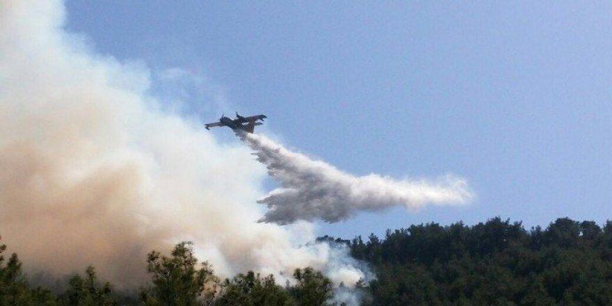 Kuyucak'taki yangın kontrol altına alındı