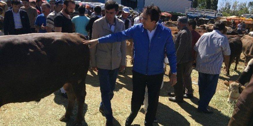 Aydemir, 'Canlı Hayvan Borsası büyük ihtiyaç'