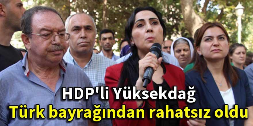 HDP'li Yüksekdağ Türk bayrağından rahatsız oldu