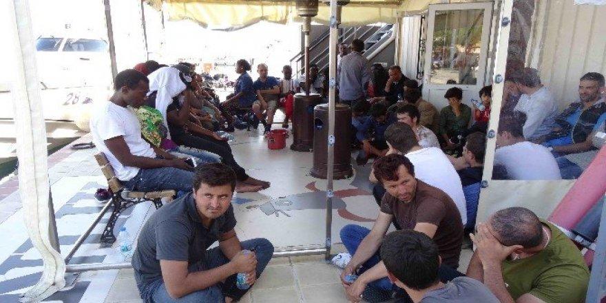 47 kaçak göçmen yakalandı