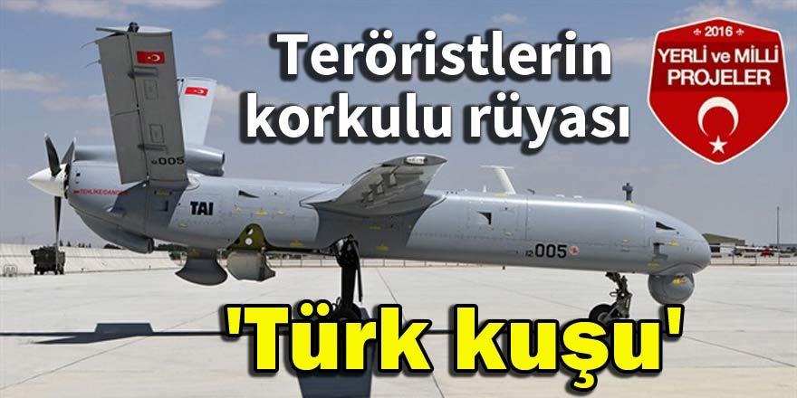 Teröristlerin korkulu rüyası 'Türk kuşu'