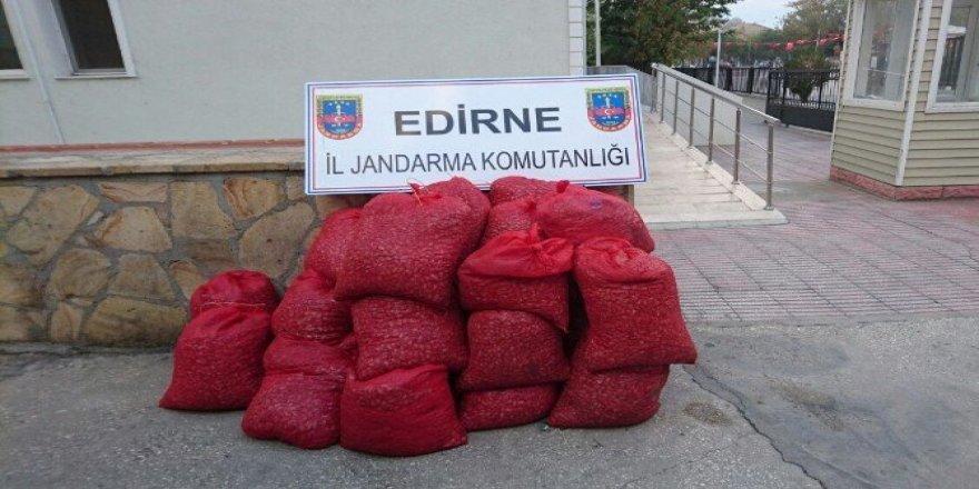 Edirne'de 20 bin TL'lik kaçak kum midyesi ele geçirildi