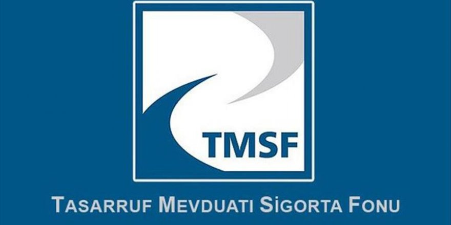 İki şirket TMSF'ye devredildi