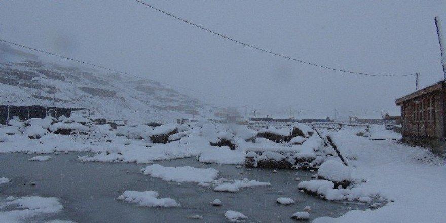 Rize'de yılın ilk karı