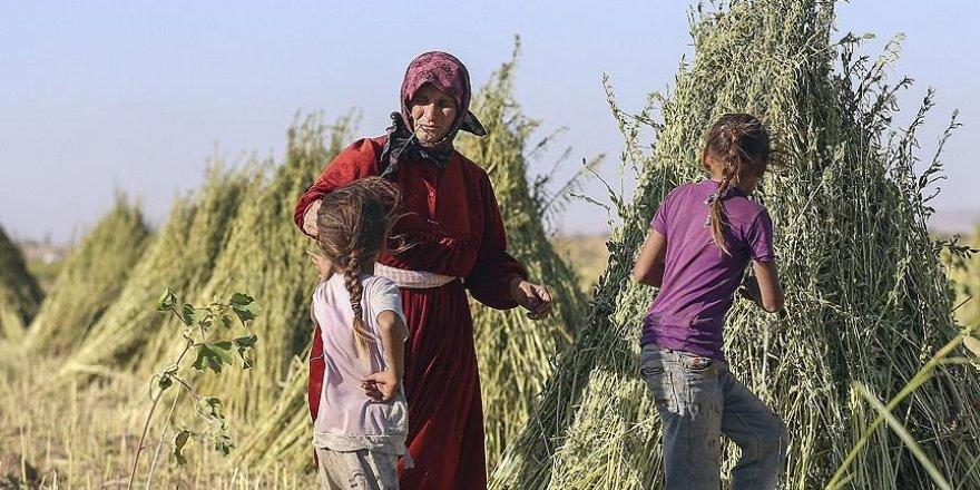 Cerabluslular: 'Türkiye'nin geleceğini duyunca...'