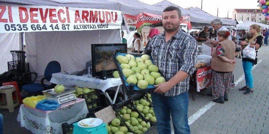Edirne'nin dev armutları görenleri şaşırtıyor