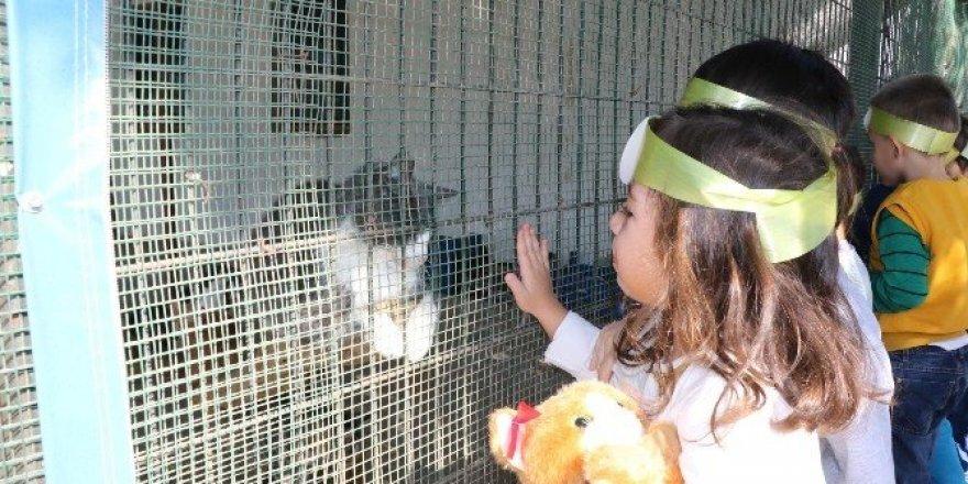 Çocuklardan sevimli dostlarına ziyaret